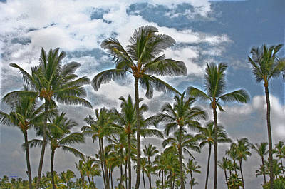 Photograph - Palms And Stormy Clouds by John Orsbun