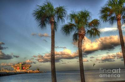 Palms At The Pier Art Print by Timothy Lowry