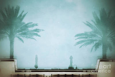 Photograph - Palms In The Pool by Darla Wood