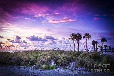 Palms On The Beach Art Print by Marvin Spates
