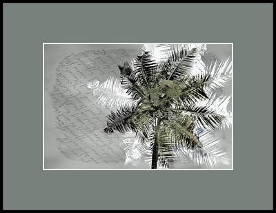 Photograph - Palms Poetic by Alice Gipson