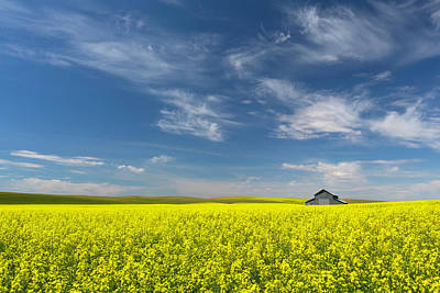 Yellow Photograph - Palouse Canola Field With Barn by Justinreznick