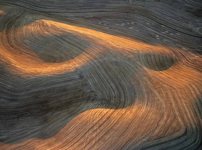 Contour Farming Photograph - Palouse Contours I by Latah Trail Foundation