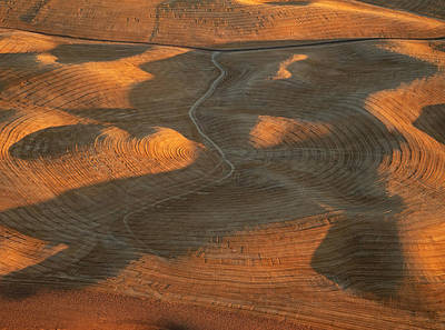 Contour Farming Photograph - Palouse Contours Iv by Latah Trail Foundation