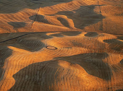 Palouse Contours V Art Print by Latah Trail Foundation