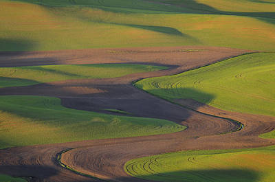 Palouse Curves Art Print by Greg Vaughn