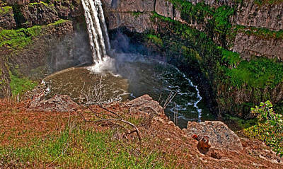 Photograph - Palouse Falls Washington Waterfalls With Marmot In Foreground Art Prints by Valerie Garner