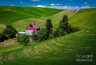Ecological Photograph - Palouse Farm Landscape by Inge Johnsson