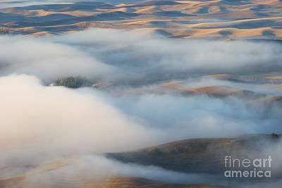 Palouse Morning Mist Original by Mike  Dawson