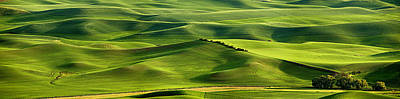 Photograph - Palouse Panorama by Mary Jo Allen