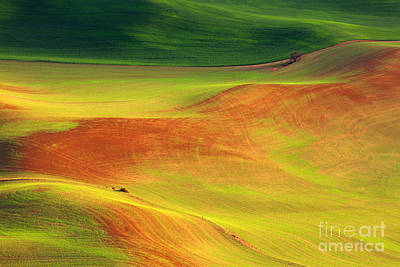 Photograph - Palouse Patterns by Beve Brown-Clark Photography