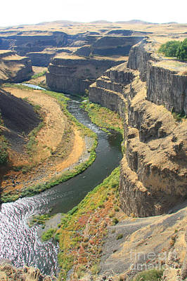 Photograph - Palouse River by Frank Townsley