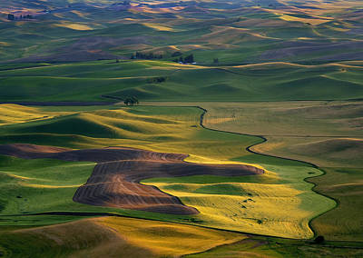 Farms Photograph - Palouse Shadows by Mike  Dawson