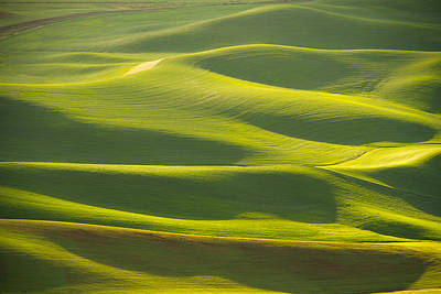 Photograph - Palouse Spring by Kunal Mehra