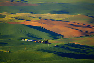 Contour Farming Photograph - Palouse - Washington - Farms - 1 by Nikolyn McDonald