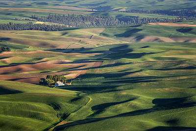 Photograph - Palouse - Washington - Farms - 2 by Nikolyn McDonald