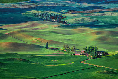 Photograph - Palouse - Washington - Farms - 4 by Nikolyn McDonald