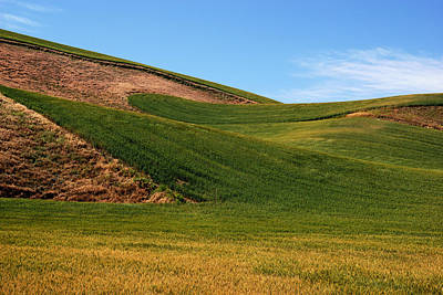 Photograph - Palouse Waves by Daniel Woodrum