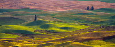 Photograph - Palouse Waves by Kunal Mehra