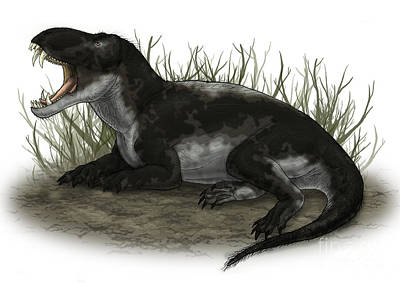 Olympic Sports - Pampaphoneus, A Genus Of Dinocephalian by Vitor Silva