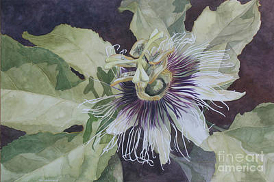 Passionfruit Painting - Panama Passion by Jan Lawnikanis
