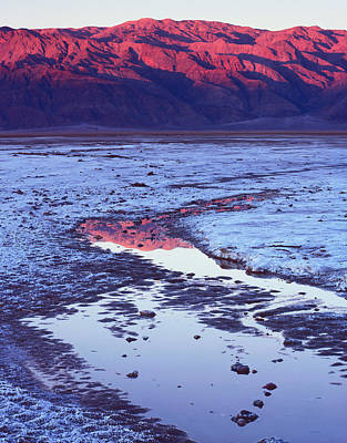 Photograph - Panamint Reflection 1-v by Tom Daniel