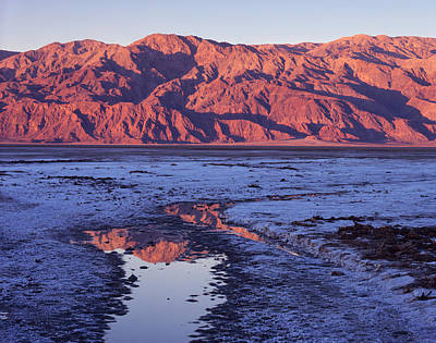 Photograph - Panamint Reflection 2 by Tom Daniel