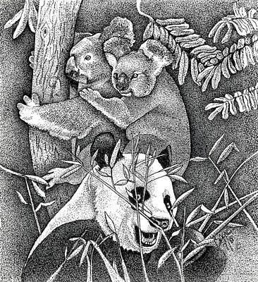 Koala Drawing - Panda And Koala by Brian Gilna
