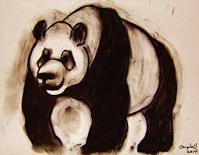 Drawing - Panda Bear by Larry Campbell