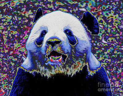 Photograph - Panda Bear Smile by Larry Oskin