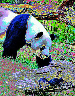Photograph - Panda Buddies by Larry Oskin
