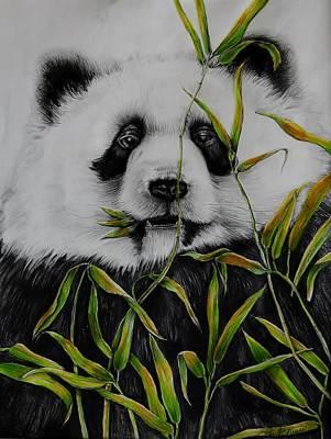 Giant Panda Mixed Media - Panda by Jean Cormier