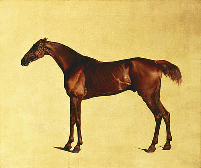 Painting - Pangloss by George Stubbs