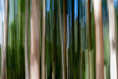 Unreal Photograph - Panning Forest 2 by Stelios Kleanthous