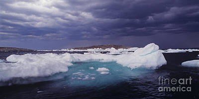 Photograph - Panorama Ice Floes In A Stormy Sea Wager Bay Canada by Dave Welling