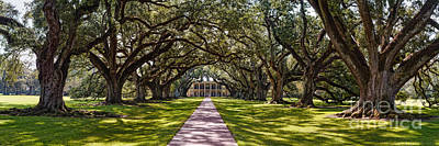 Panorama Of Oak Alley Plantation - Vacherie Louisiana Art Print by Silvio Ligutti