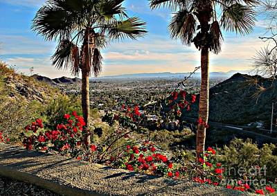 Photograph - Panorama Of Phoenix by Michaline  Bak
