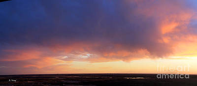 Photograph - Panorama Skies Of Blue And Orange by Roena King