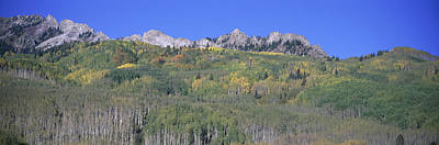 Panoramic Of Autumn Color Art Print