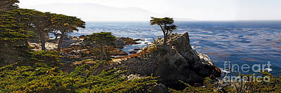 Lone Cypress Photograph - Panoramic View Of The Pacific Coastline At Pebble Beach by George Oze