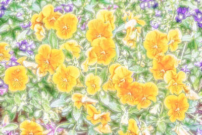 Digital Art - Pansies by Photographic Art by Russel Ray Photos