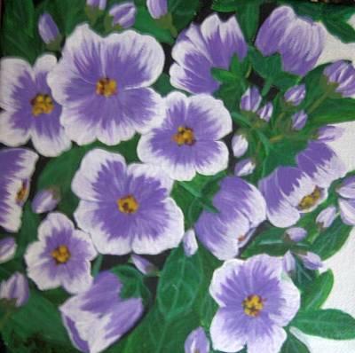 Pansies Art Print by Usha Rai