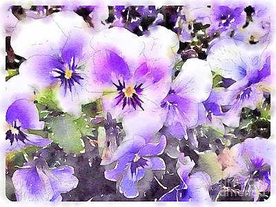 Pansies Watercolor Art Print by John Edwards