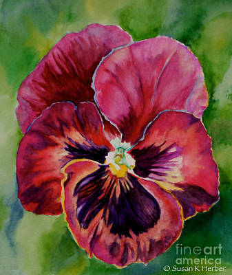 Painting - Pansy Play by Susan Herber