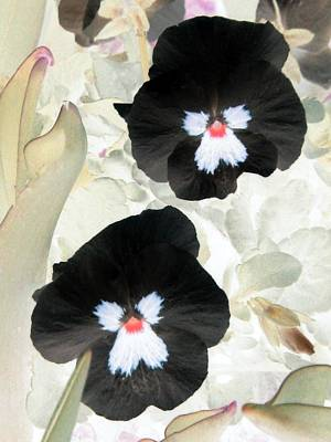 Photograph - Pansy Power 23 by Pamela Critchlow