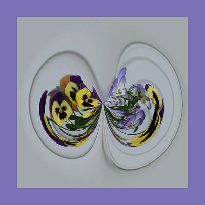 Photograph - Pansy Series 506 by Jim Baker