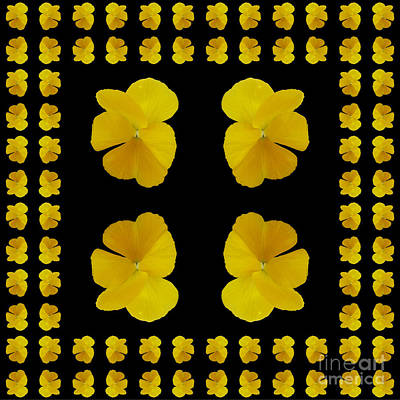 Photograph - Pansy Tiles by Barbara Moignard