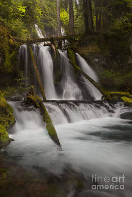 Lichen Photograph - Panther Creek Falls Washington by Keith Kapple
