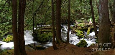 Photograph - Panther Creek Panorama- Washington by Rick Bures
