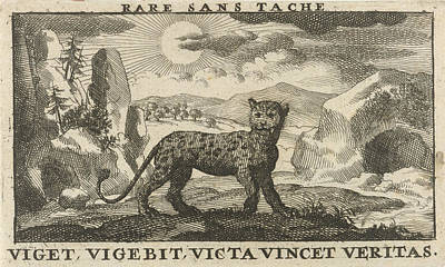 Panther Drawing - Panther In A Landscape, Jan Luyken, Jan Claesz Ten Hoorn by Jan Luyken And Jan Claesz Ten Hoorn